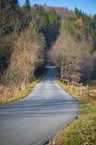 Straße zum Wald lizenzfreie stockfotos