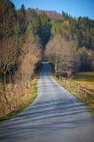 Straße zum Wald lizenzfreie stockfotografie