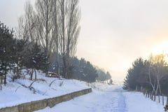 Straße zum Wald während der Winterzeit mit Nebel in Erzurum, die Türkei lizenzfreies stockbild