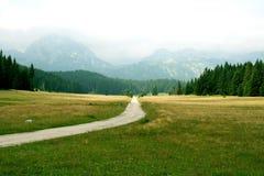 Straße zur Natur Stockfotos