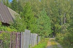 Straße zur Waldlandschaft stockbild