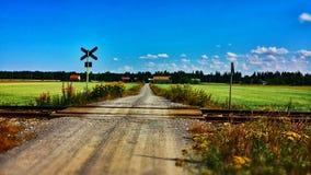 Straße zwischen Feldern Stockbild
