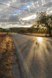 Straße zwischen Feldern Stockfoto