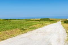 Straße zwischen Maisfeldern und Wiesen durch das Meer Stockfotografie