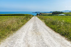 Straße zwischen Maisfeldern und Wiesen durch das Meer Lizenzfreie Stockfotografie
