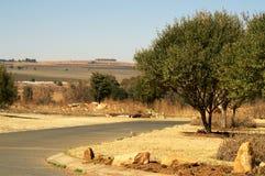 Straßen-Ansicht des Feldes Stockfotos