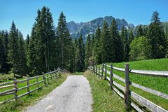 Straßen-Berg in Durmitor-Park, Montenegro stockfotos