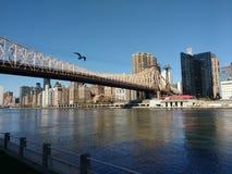 59. Straßen-Brücke, Ed Koch Queensboro Bridge, NYC, NY, USA Lizenzfreie Stockfotografie