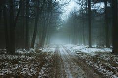 Straßen des verschneiten Winters Lizenzfreies Stockbild