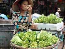 Straßen Hanoi-` s alten Viertels Stockbild