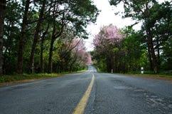 Straßen im Tal. stockfotos
