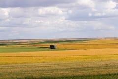 Straßen-LKW in der Landschaft von mehrfarbigen Feldern mit verschiedener Ernte Stockbild