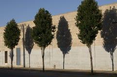 Straßenbäume außerhalb der Fabrikwand Stockbilder