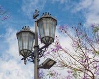 Straßenbeleuchtung der alten Art Lizenzfreie Stockfotos