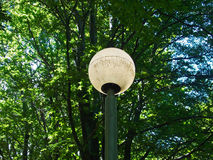 Straßenbeleuchtung im Wald Lizenzfreie Stockfotos