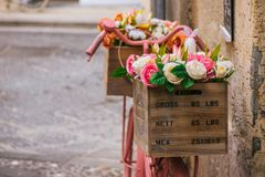 Straßenblumen in Syrakus, Sizilien stockbild