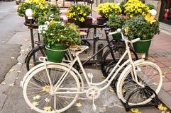 Straßendetail mit bycicle stockfotografie