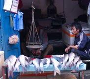 Straßenhandel der Fische in Kathmandu, Nepal Lizenzfreie Stockfotografie