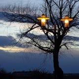 Straßenlaterne, alleiner Baum, Dämmerung Lizenzfreies Stockbild
