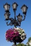 Straßenlaterne in der historischen Mitte von Lvov, Ukraine Stockbilder