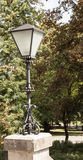 Straßenlaterne in einem Park Lizenzfreie Stockbilder
