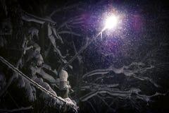 Straßenlaterne glänzend durch fallenden Schnee Lizenzfreies Stockbild