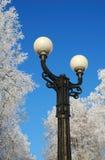 Straßenlaterne im Winter lizenzfreie stockfotografie