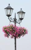 Straßenlaterne und Blumen Stockfotos