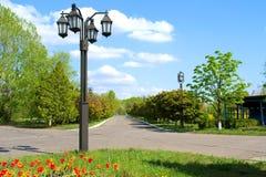 Straßenlaternen, Tulpen und Straße stockfoto