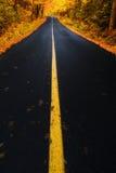 Straßenlauf durch Autumn Forest Stockfotografie