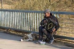 Straßenmusiker, der das Akkordeon spielt Balashikha, Russland Stockfotografie