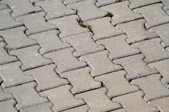 Straßenpflasterungsteine Lizenzfreies Stockbild