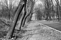 Straßenphotographie, Gegenstände, Beschaffenheiten, Landschaften stockfoto