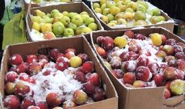 Straßenstall mit schneebedeckten Äpfeln Lizenzfreie Stockbilder