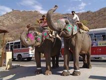 Straßenszene mit Elefanten Jaipur, Rajasthan, Indien Stockfotografie