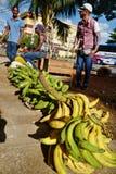 Straßenverkäufer in Havana, Kuba stockbilder