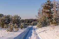 Straßenwaldschneewinter schneebedeckt Stockbilder