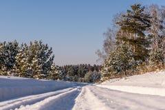 Straßenwaldschneewinter schneebedeckt Stockfoto