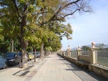 Straße von im Stadtzentrum gelegenem Murcia lizenzfreie stockfotos