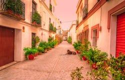 Straßen von Tarifa andalusia cadiz spanien stockfoto