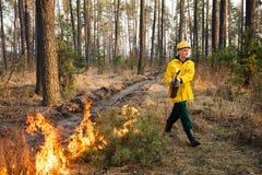 Strażak używa kontrolowanego ogienia w lesie obrazy stock