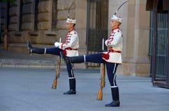 Strażnicy honor zdjęcie stock