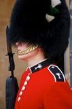 strażowy królewski Zdjęcia Stock