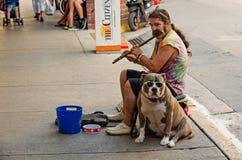 Stra?e musian oder Mann, der Fl?te mit Hund in USA spielt lizenzfreies stockfoto