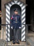 Strażnik honor Obraz Stock