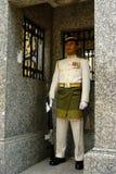 strażowy obywatel Zdjęcia Stock