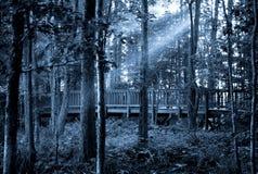 Straal maanlichten Royalty-vrije Stock Foto
