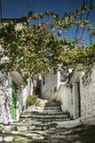 Straat in berat oude stad in Albanië Royalty-vrije Stock Afbeeldingen