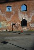 Straat in Brooklyn Royalty-vrije Stock Afbeelding