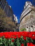 Straat in de Stad van New York Royalty-vrije Stock Afbeeldingen